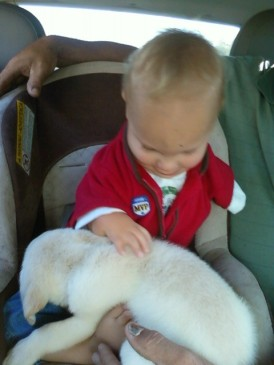 October 3, 2010 - Bringing home Sarge!